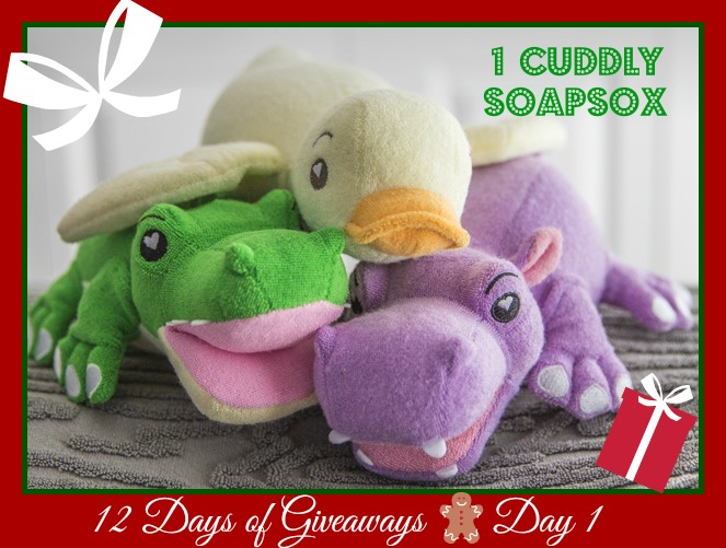 Live in the d 12 days of christmas giveaway